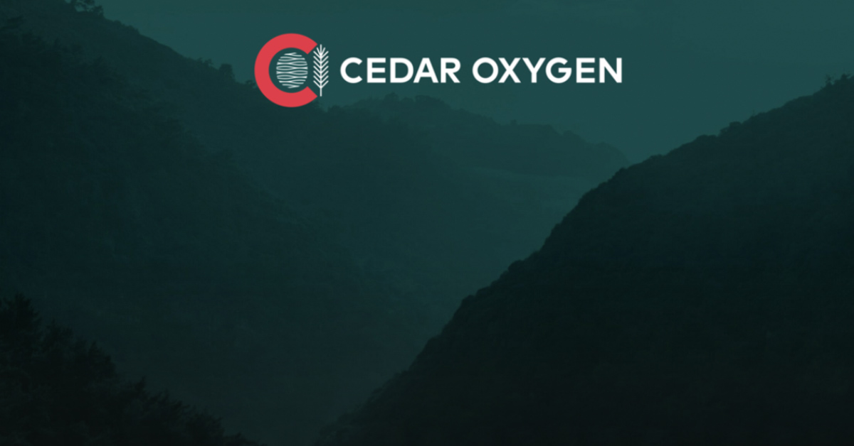 Lebanon to launch Cedar Oxygen Fund to finance industrialists, importers and exporters